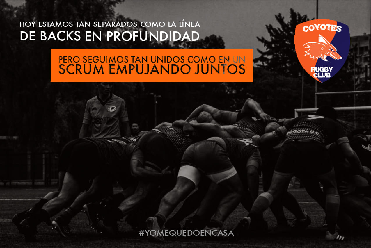 covid_rugby